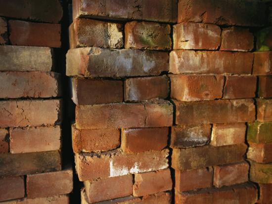 joel-sartore-a-stack-of-bricks