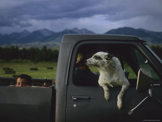 joel-sartore-a-young-boy-and-his-dog-ride-in-his-grandfathers-truck