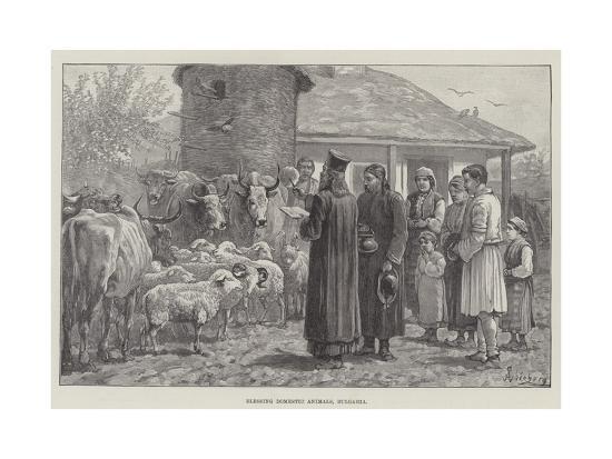 johann-nepomuk-schonberg-blessing-domestic-animals-bulgaria