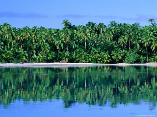 john-banagan-palm-trees-on-aitutaki-lagoon-aitutaki-southern-group-cook-islands
