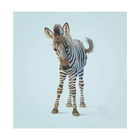 john-butler-art-zebra