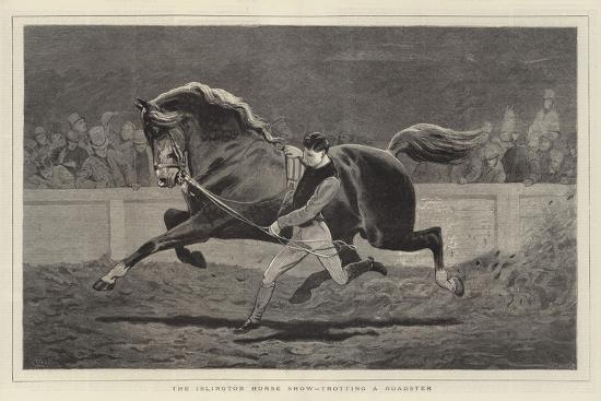 john-charlton-the-islington-horse-show-trotting-a-roadster