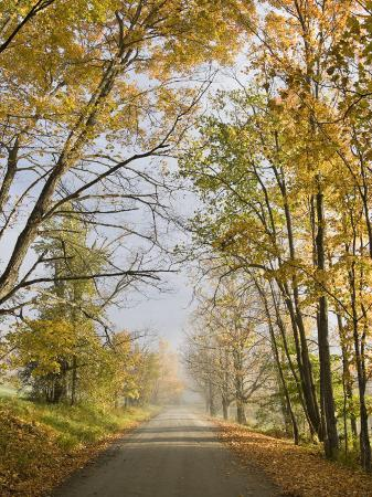 john-churchman-rural-road-in-autumn-at-dawn-vermont