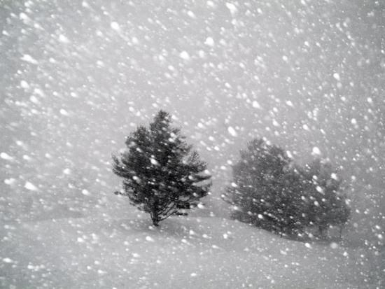 john-churchman-sudden-snow-flurry