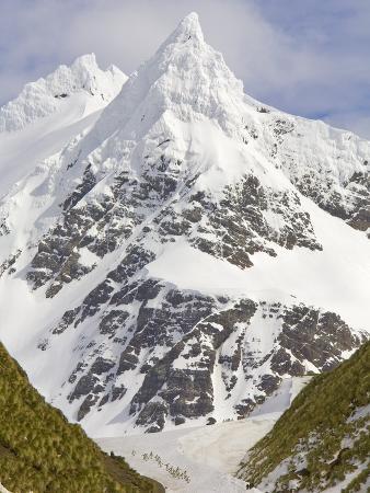 john-eastcott-yva-momatiuk-snowy-peak-towering-over-king-penguins-and-fur-seals