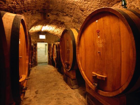 john-elk-iii-aging-barrels-in-castellina-in-chianti-enoteca-chianti-tuscany-italy
