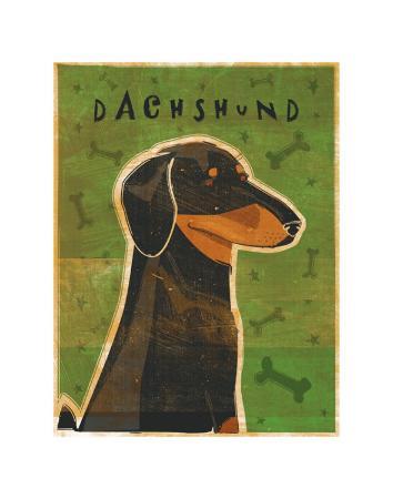 john-golden-dachshund