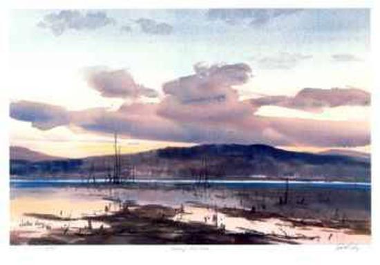 john-joy-evening-loon-lake