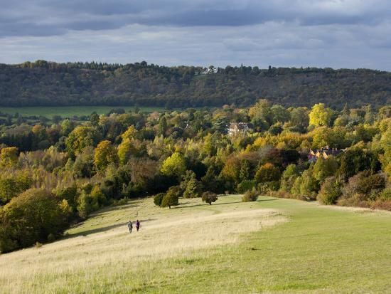 john-miller-autumn-view-north-along-the-burford-spur-of-box-hill-surrey-hills-north-downs-dorking-surrey-e