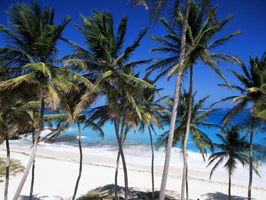 john-miller-bottom-bay-barbados-west-indies-caribbean-central-america