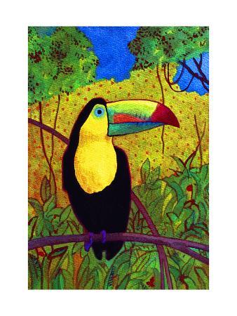 john-newcomb-toucan