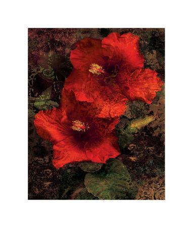 john-seba-hibiscus-ii
