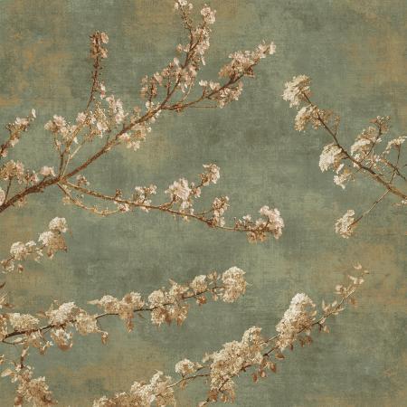 john-seba-morning-blossom-ii