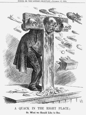 john-tenniel-a-quack-in-the-right-place-1864
