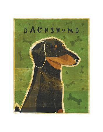 john-w-golden-dachshund-black-and-tan