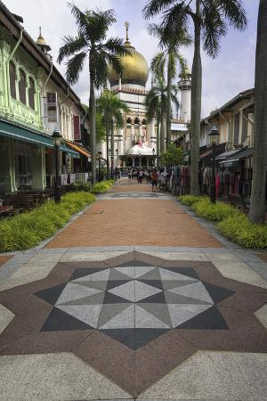 john-woodworth-road-leading-to-the-sultan-mosque-in-the-arab-quarter-singapore-southeast-asia-asia