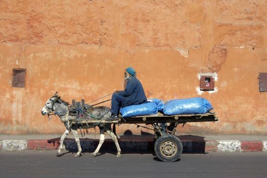 johnny-greig-donkey-and-cart-transportation
