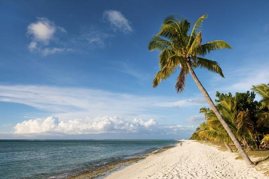 jordan-banks-turquoise-sea-and-white-palm-fringed-beach-le-morne-black-river-mauritius-indian-ocean-africa