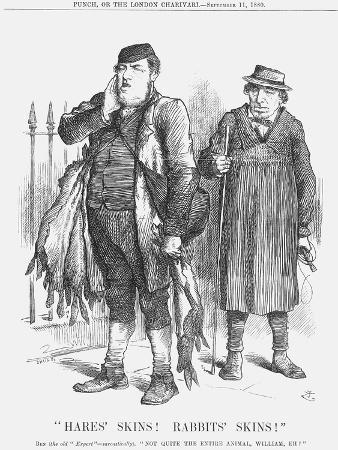 joseph-swain-hares-skins-rabbist-s-skins-1880
