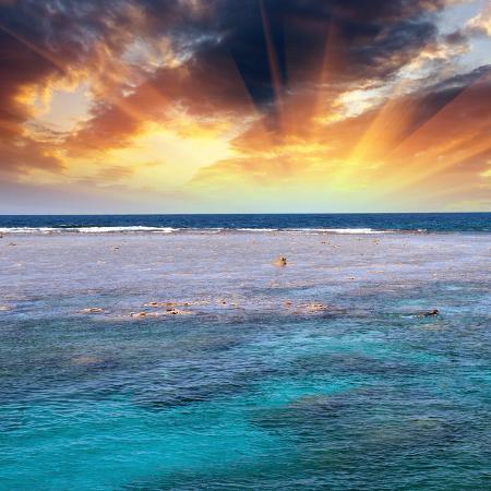 jovannig-queensland-australia-wonderful-colors-of-coral-reef