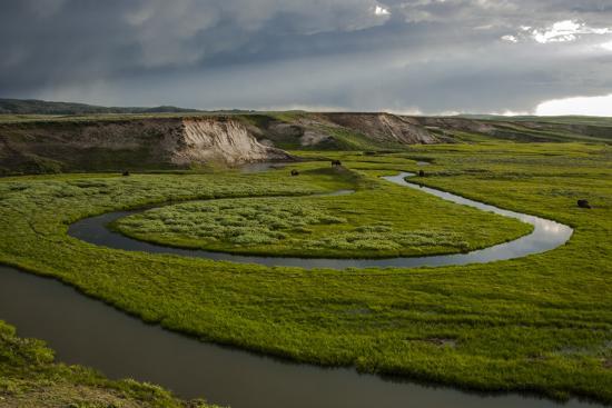 judith-zimmerman-wyoming-yellowstone-national-park