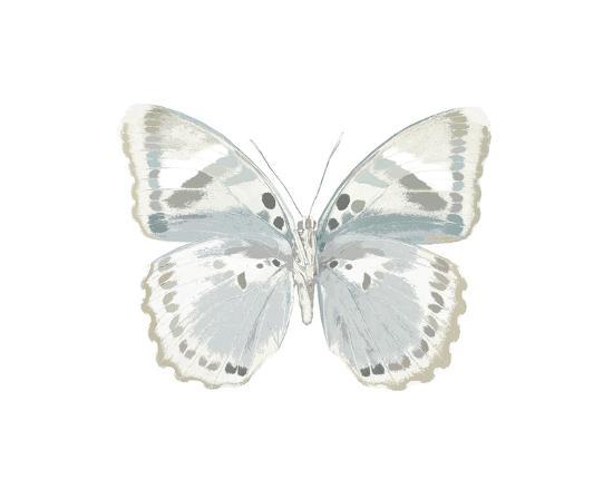 julia-bosco-butterfly-in-mandarin