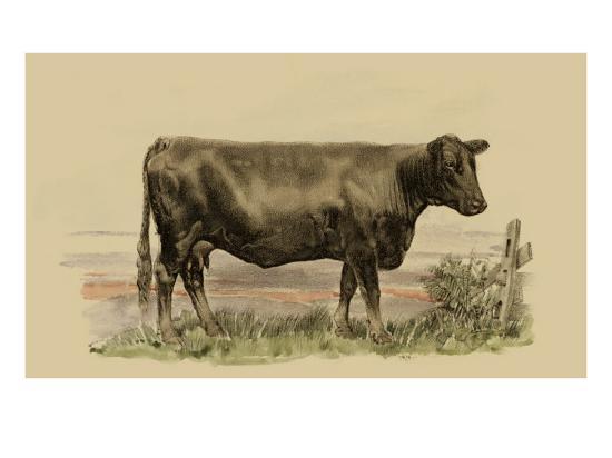 julian-bien-antique-cow-ii