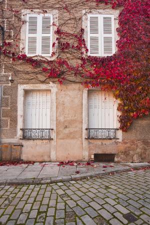 julian-elliott-autumn-leaves-in-noyers-sur-serein