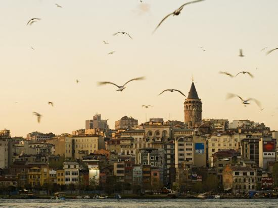 julian-love-seagulls-flock-above-the-golden-horn-istanbul-with-the-galata-tower-in-the-background
