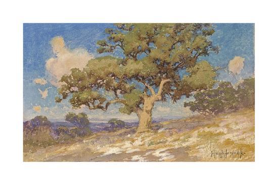 julian-onderdonk-high-desert-oaks