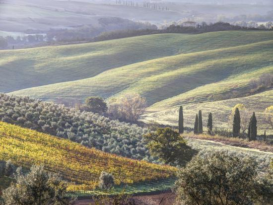 julie-eggers-europe-italy-tuscany-tuscan-landscape-in-autumn