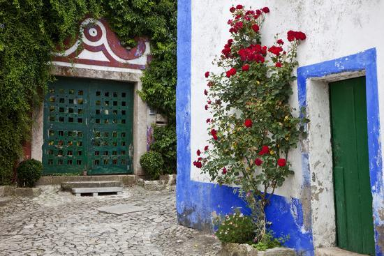 julie-eggers-street-along-obidos-leiria-portugal