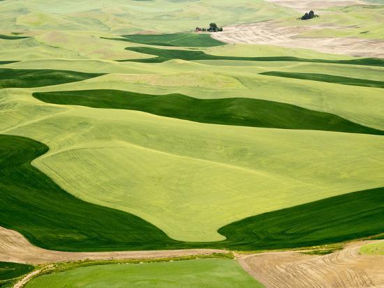 julie-eggers-washington-palouse-whitman-county-aerial-of-palouse-region