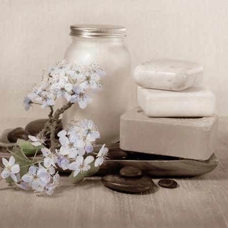 julie-greenwood-hydrangea-and-soap