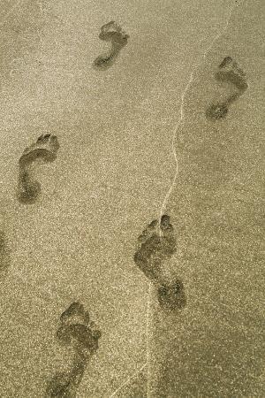 julien-mcroberts-footprints-in-the-sand-puerta-vallarta-mexico