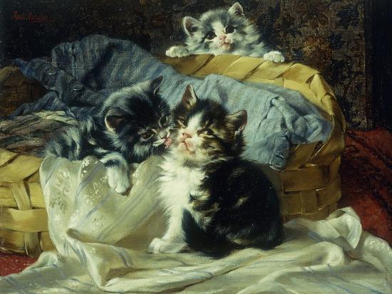 julius-adam-playful-kittens