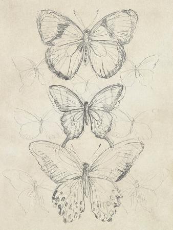 june-erica-vess-vintage-butterfly-sketch-i