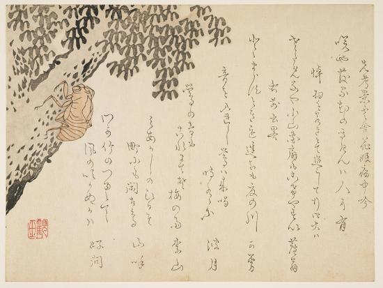kangyoku-shell-of-a-cicada-c-1848-53