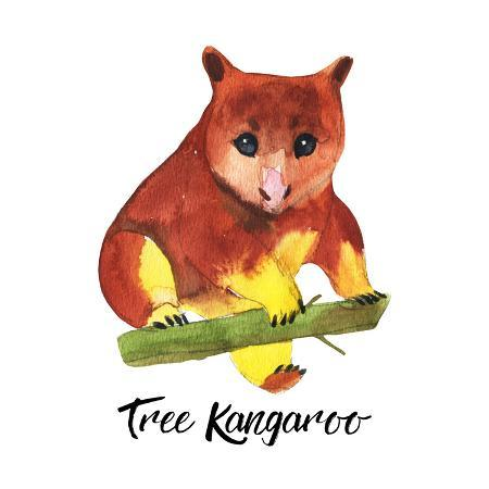 kat-branch-australian-animals-watercolor-illustration-hand-drawn-wildlife-isolated-on-a-white-background-tree