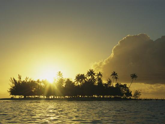 kate-thompson-small-silhouetted-island-with-palm-trees-at-twilight