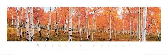 kathleen-norris-cook-autumn-trees