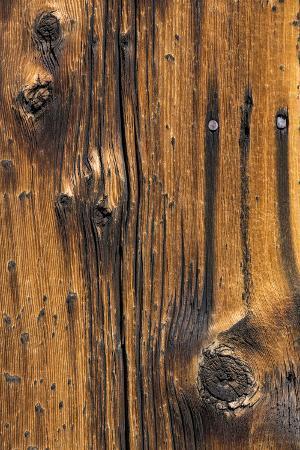kathy-mahan-wood-detail-i