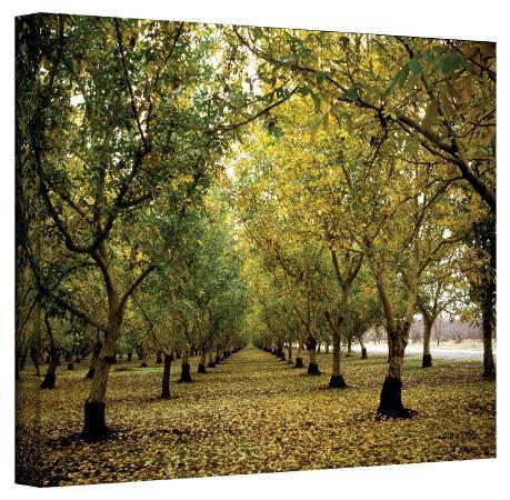 kathy-yates-kathy-yates-fall-orchard-canvas-art