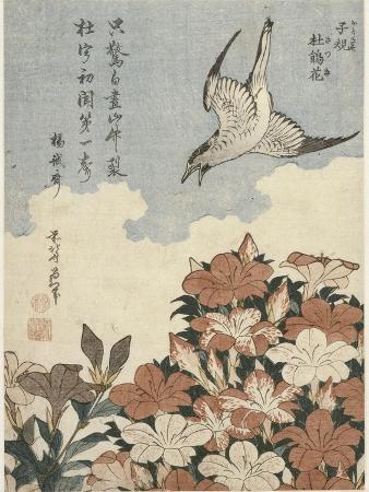 katsushika-hokusai-coucou-et-azalees