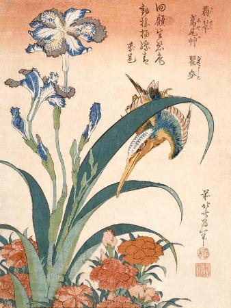 katsushika-hokusai-kingfisher-irises-and-pinks-colour-woodblock-print