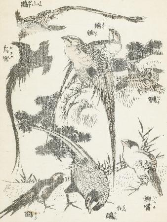 katsushika-hokusai-manga-volume-3-les-lutteurs