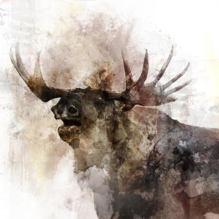 ken-roko-moose-call
