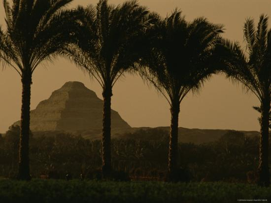 kenneth-garrett-palm-trees-frame-a-view-of-the-step-pyramid-of-djoser