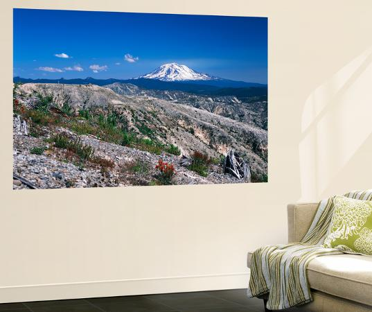 kent-foster-mt-adams-from-windy-ridge-mt-st-helens-volcanic-national-monument-washington-usa