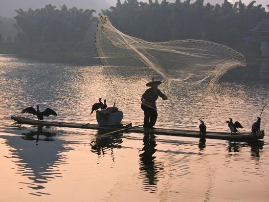 keren-su-fisherman-fishing-with-cormorants-on-bamboo-raft-on-li-river-at-dusk-yangshuo-guangxi-china